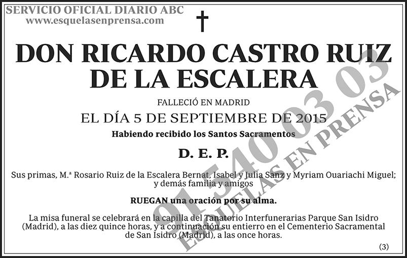 Ricardo Castro Ruiz de la Escalera